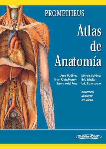[PDF] Prometheus Atlas Anatomía - Free Download …
