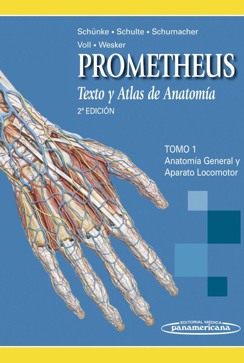 Un átlas de anatomía para usar en las consultas – raulferrer.org
